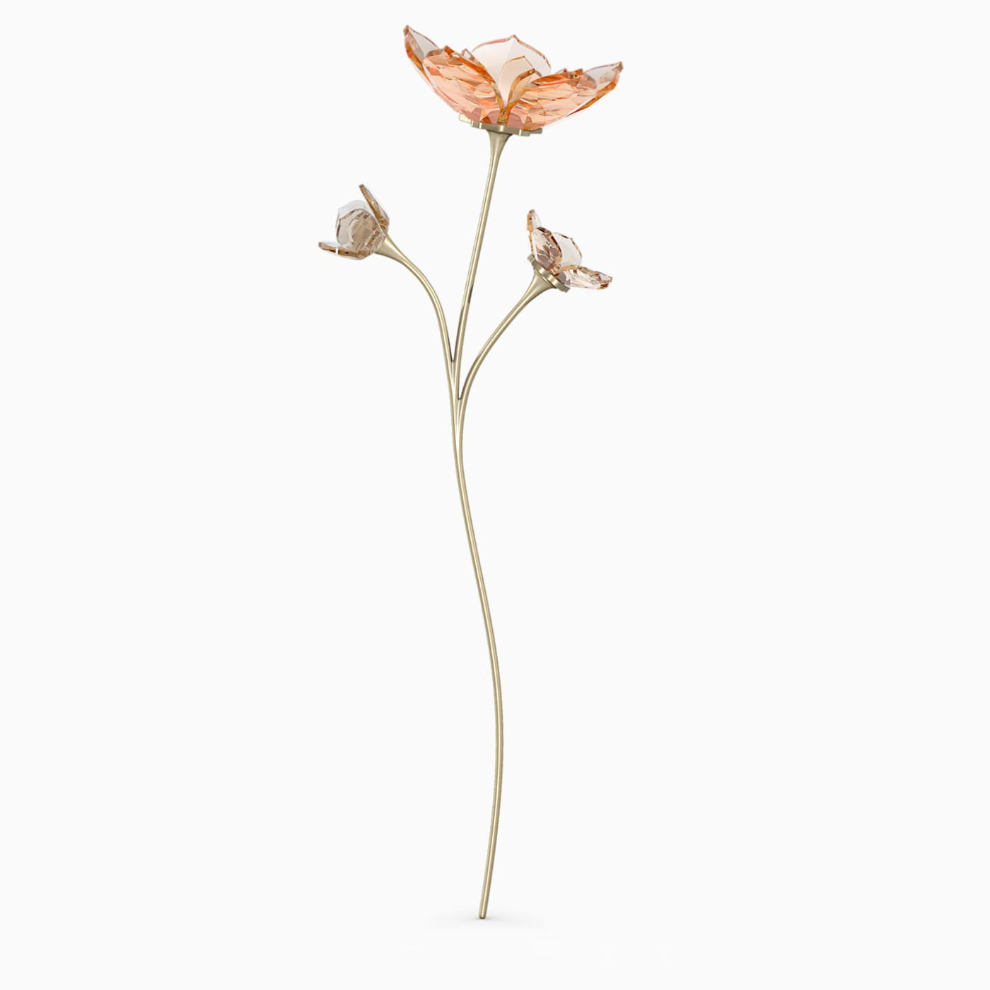 Garden Tales, Magnolia, Swarovski